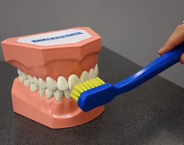 Předchozí článek Jak si správně čistit zuby ... 0f843978b6